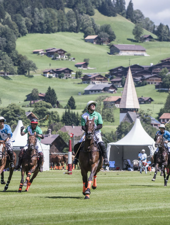 horses playing polo