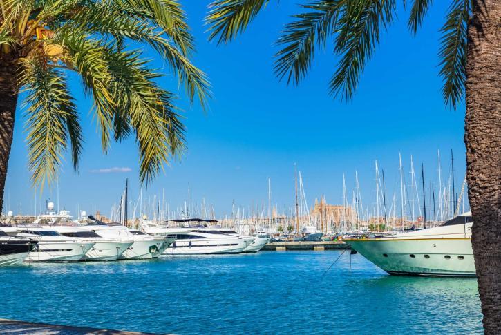 Yachts in Palma Mallorca
