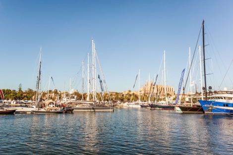 Yachts in Mallorca