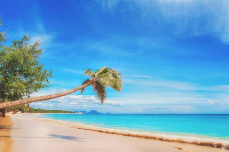 Tropical beach winter yachting destination